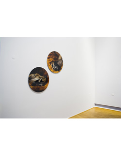 Jo Longhurst, Installation view: <em>It's All in My Mind</em>, 2004, 2 chromogenic prints mounted on aluminium, each 710mm diameter, installation area variable. Museum Folkwang, Essen, 2008