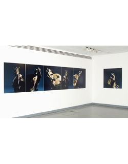 Jo Longhurst, Installation view: <em>The Refusal (Part III)</em>, 2007, 6 chromogenic prints on aluminium, three 84cm x 1010mm, three 101 x101cm. Royal College of Art, London 2007