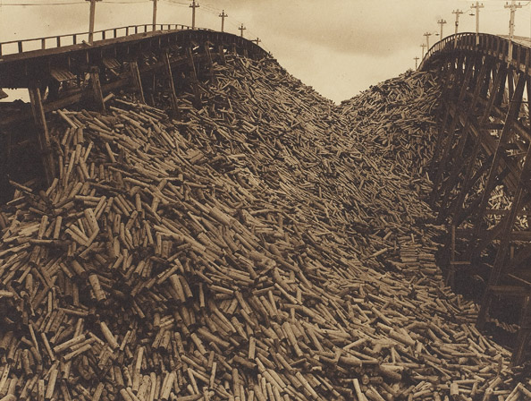 J.C.M. Hayward, Wood pile