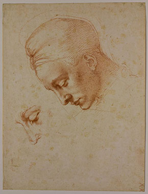 Michelangelo, Studies for the head of Leda, c.1630