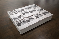 Emmanuelle Léonard, installation view:<br /> <em>National Assembly of Quebec</em>, 2009, Newspapers, 12 pages, 32 cm x 36 cm each.