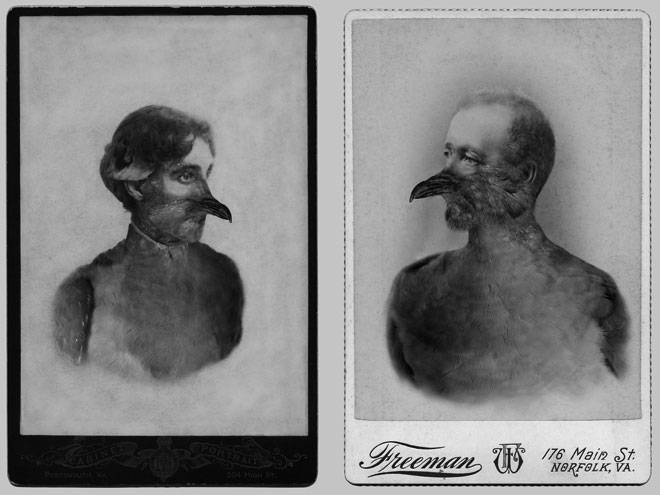 Sara Angelucci, L: Aviary (Female Passenger Pigeon/extinct), 2013, R: Aviary (Male Passenger Pigeon/extinct), 2013