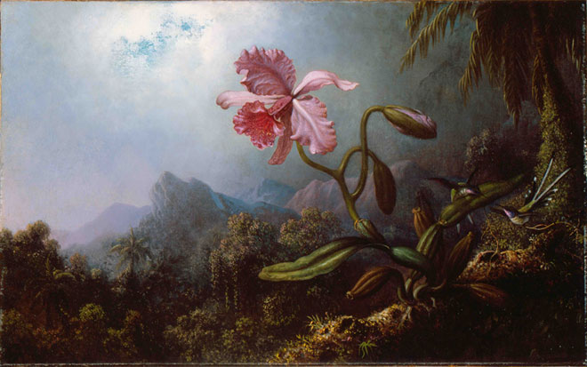 Martin Johnson Heade, Two Hummingbirds with an Orchid, 1875