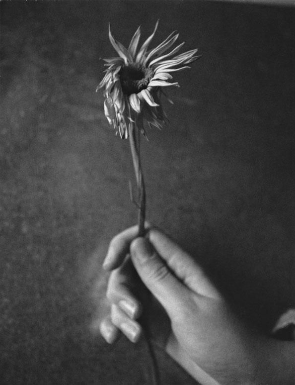 Patti Smith, Jesse with Flower, 2003