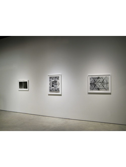 Annie MacDonell, Installation view: works from the series <em>To Everything There is a Season</em>, 2010- 2011, dimensions variable, part of <em>The Abyss and the Horizon</em> at the Art Gallery of Windsor, 2010