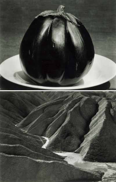 Edward Weston and Affinities